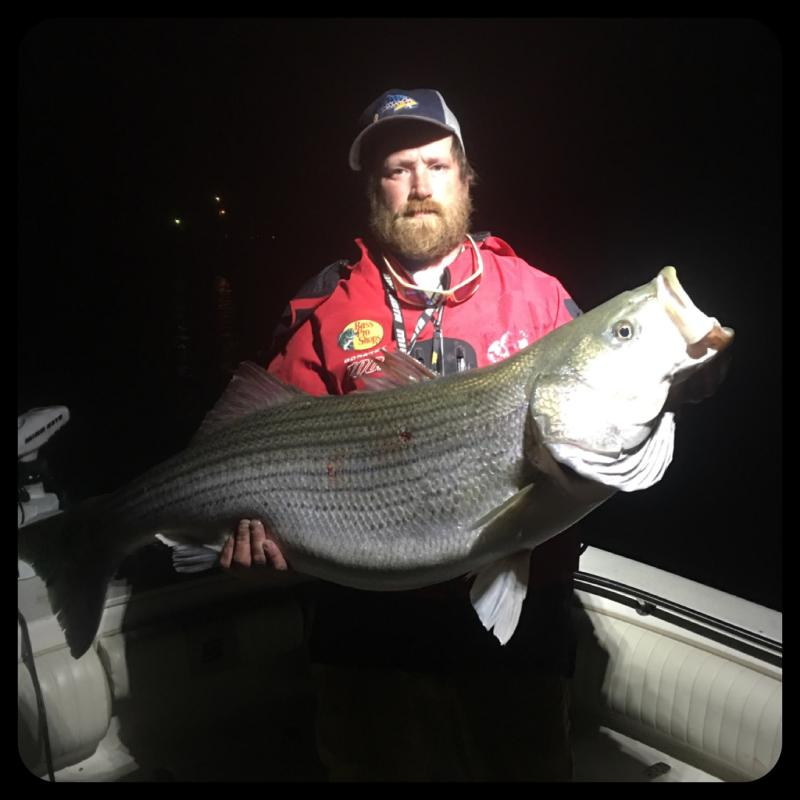 Got You Hooked Striped Bass Guide - Mike Walker