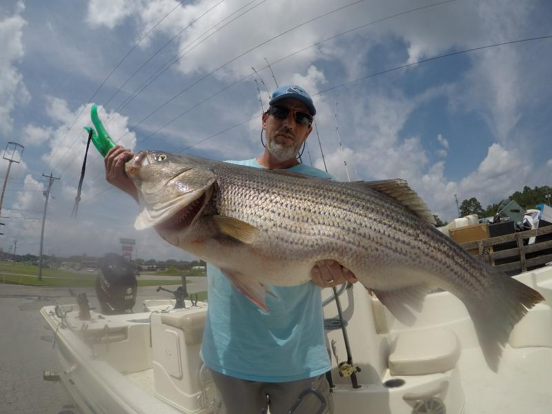 Got You Hooked Striped Bass Guide - Brian Farley