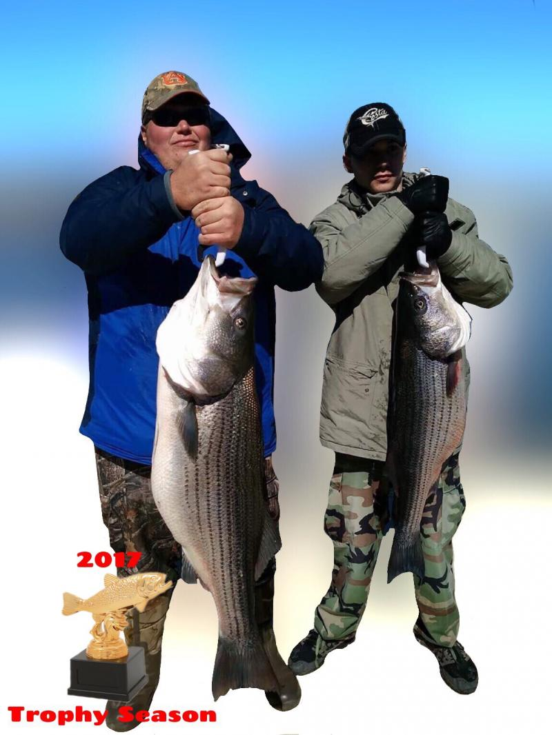 Monster Striper 2017